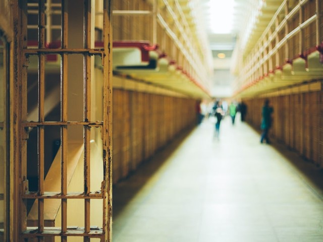 Prisoners, Police and the Pandemic