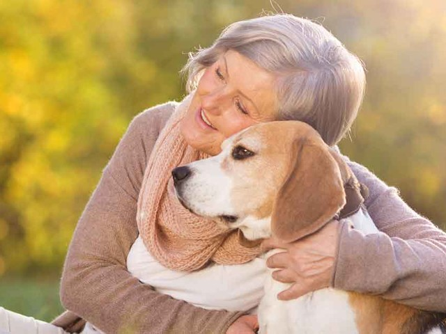 Service, Therapy and Emotional Support Animals: What's the Difference?