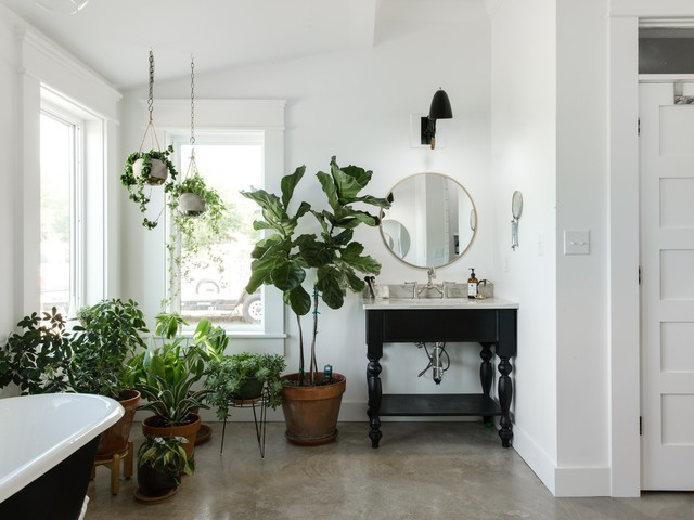 Amazon's New Plant Store Just Made it Easier to Be a Plant Person
