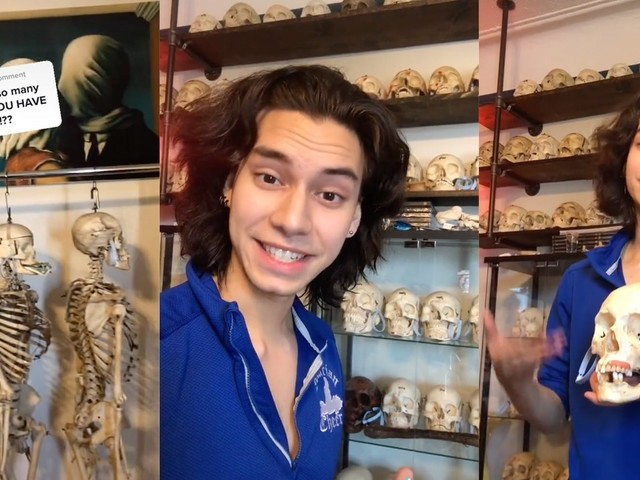 'Whose bones are those?': People have questions about this TikToker's skull collection