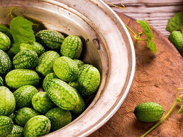 Meet the Hairy Horticulturist—and the Tiny Cucamelon