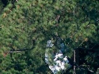 Florida veterinarian, wife die in plane crash near airport