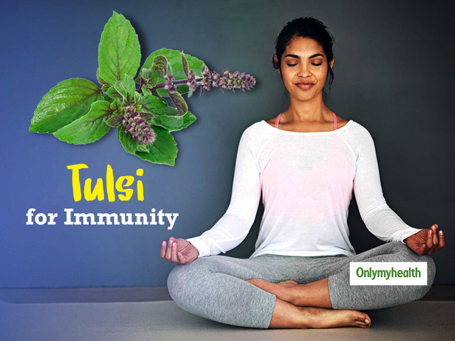 Here's How Tulsi is a Powerful Herbal Immunity Booster