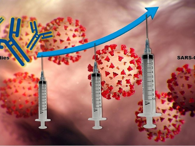 For transplant recipients, third time may be the charm for better COVID vaccine protection