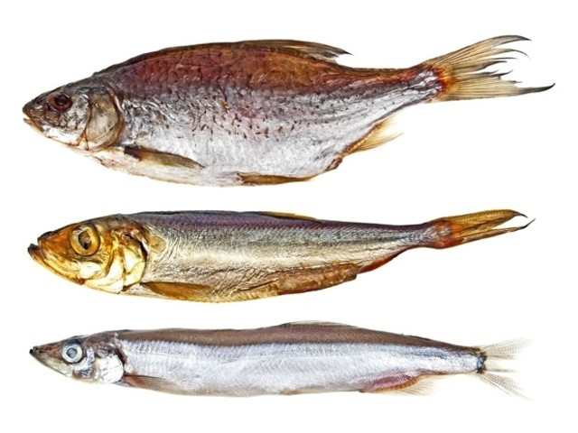Jawless fish study provides a new story for inner ear evolution