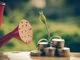 How to Start Investing in Small Startup Companies Today