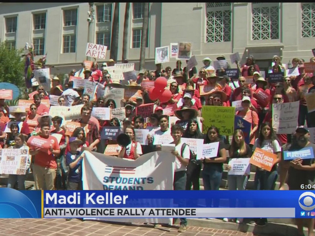 Anti-Violence Activists Demand Action From Lawmakers At DTLA Rally