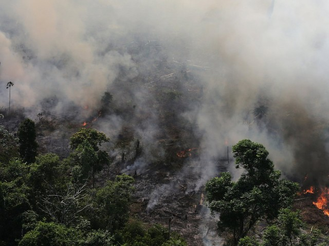 The Amazon Rainforest is burning. Here's why there are so many fires and what it all means for the planet.