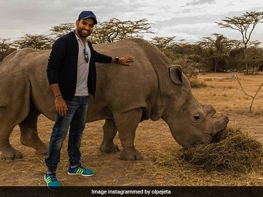 In Pics: Rohit Sharma Met World's Last Male Northern White Rhino In 2015