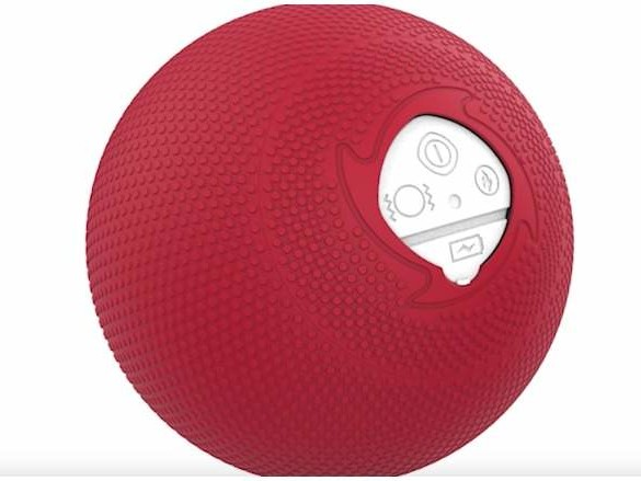 MyoStorm Theraputic Massage Ball, 'Shark Tank': 5 Fast Facts You Need to Know