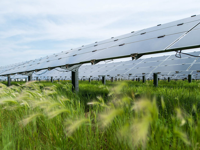 New Technology Needs Government Support. Solar Energy's No Different