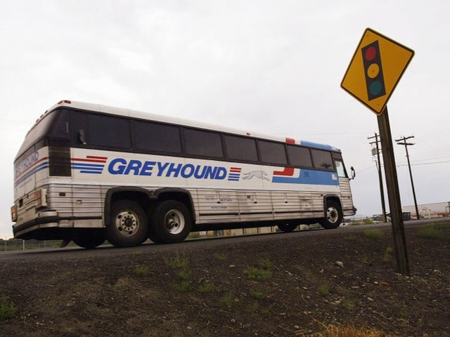 Greyhound hit with boycott calls over shock decision to stop immigration cooperation