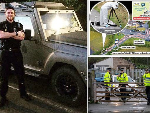 Murdered officer, 28, was 'hit by a police dog vehicle'
