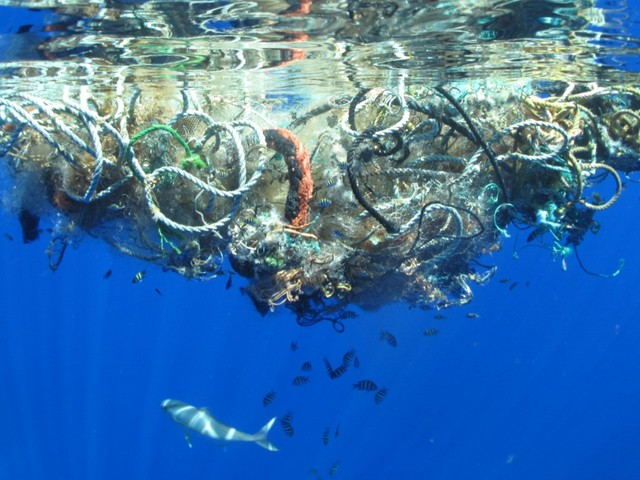 The massive plastic-cleaning device in the Great Pacific Garbage Patch probably won't hurt sea creatures — but there's still a big problem to sort out