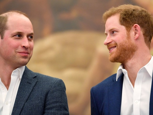 Prince Harry Admits That There Is A Rift Between Himself and Prince William