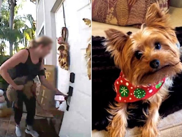 Embattled dog-walking app Wag hit with new dead-pooch accusation