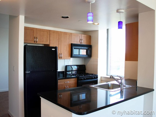 New York Apartment: Studio Apartment Rental in Lower East Side (NY-16908)