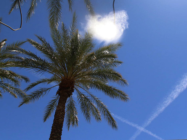 Sunny, mild weather expected in Las Vegas Valley early this week