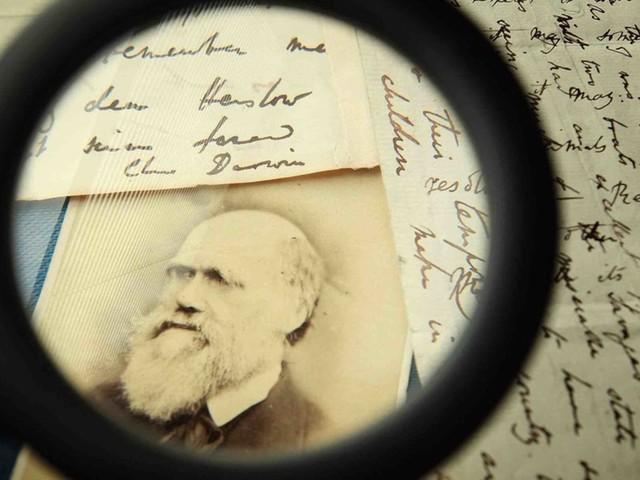 If you challenge Darwinism, you challenge everything about Progressivism