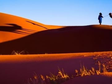 How The Sahara Desert Can Power The Entire World
