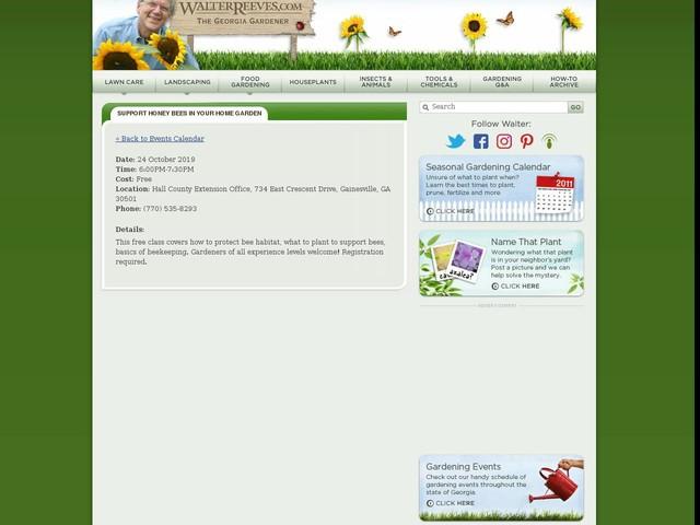 Support Honey Bees In Your Home Garden