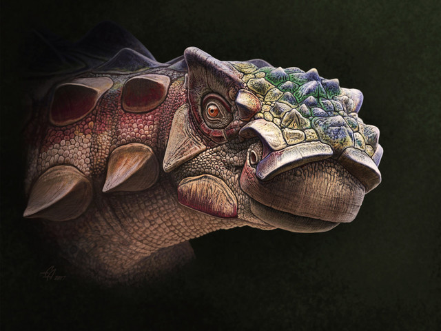 Photos: Spiky-Headed Dinosaur Found in Utah, But It Has Asian Roots