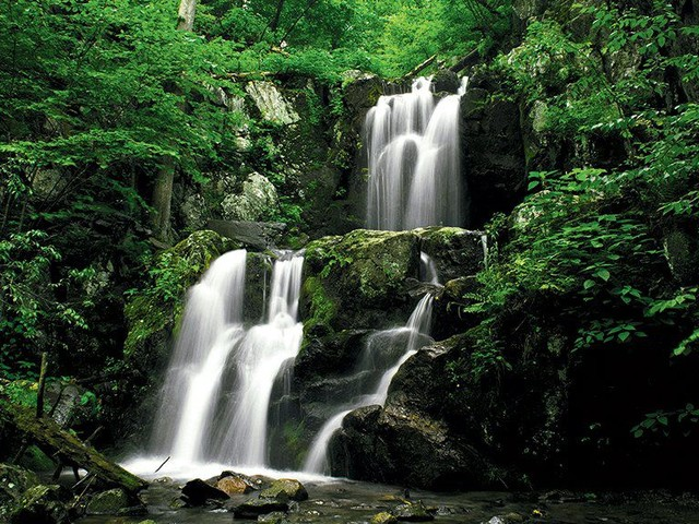 5 Great Hikes in Shenandoah National Park