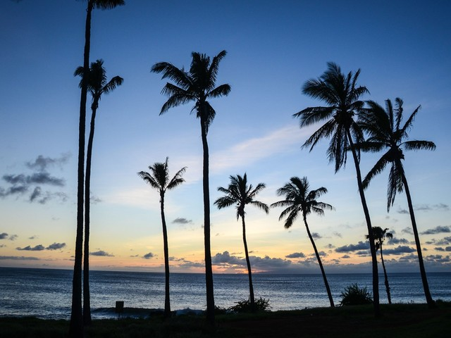 Tomorrow Only: United's Unique Flight Out of Hawaii in Business Class For Only 50K Miles