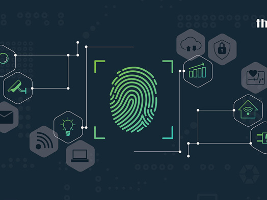 Protecting IoT and Machine Identities (IDs) with Automated PAM Tools