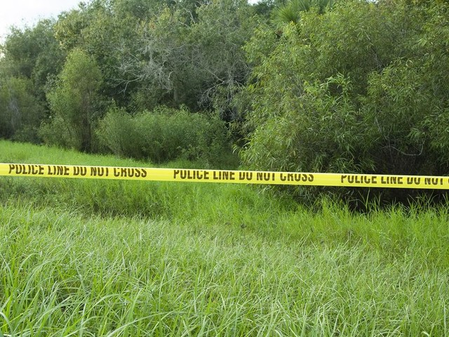 Laundrie family attorney explains why human remains in Fla. park are very likely those of Brian Laundrie