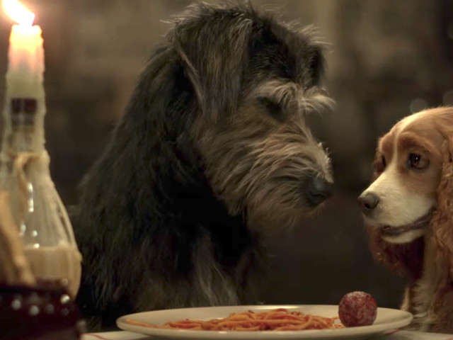 Disney+'s 'Lady and the Tramp' just got an im-paw-ssibly cute trailer