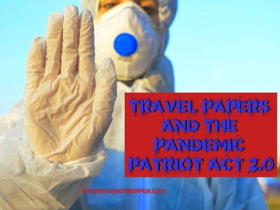 """Travel Papers"" & The Pandemic Patriot Act 2.0"