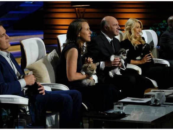 Gallant Stem Cell Bank on 'Shark Tank': 5 Fast Facts You Need to Know