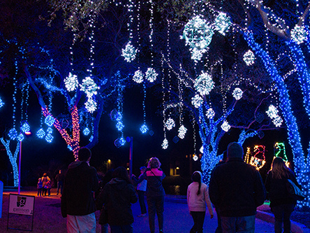 10 Reasons To Visit Galveston During The Holidays