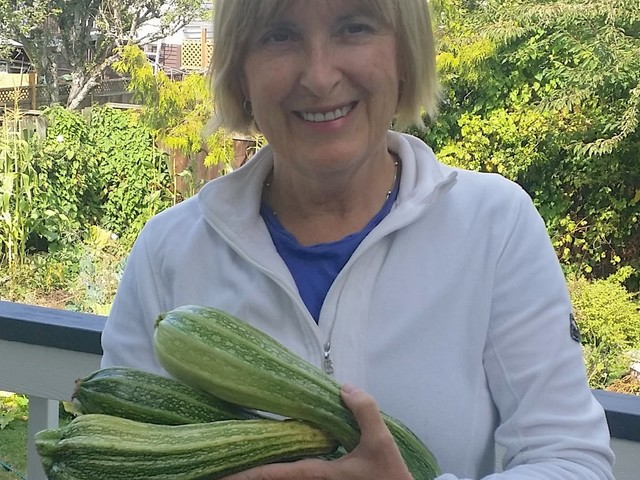 Zucchini bounty — and some tips for their versatile use