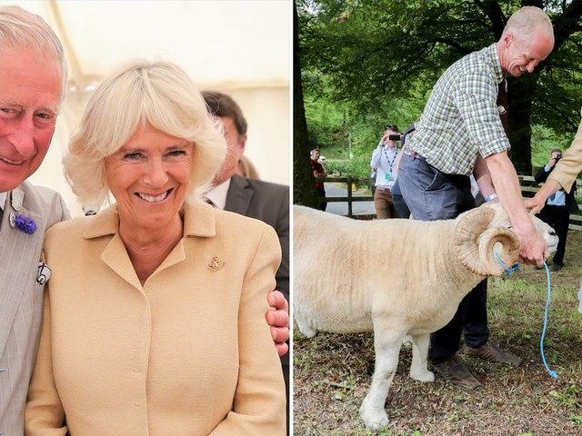 Camilla Parker Bowles Spent Her 72nd Birthday With 2 Donkeys Named William and Harry