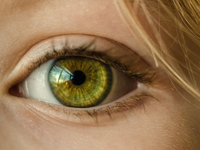 Eyes: Windows To The Risk of Alzheimer's Disease