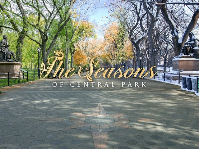 This Clever Timelapse Blends Seasons in Central Park Into One Frame