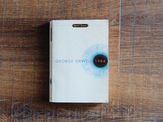 A Message To Anyone Who Feels Like 'Winston' In Orwell's 1984