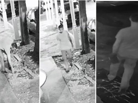 Man caught on camera smashing car window, stealing camera in Marigny