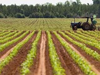 Farm Business Start-Up Checklist for Northeast Florida