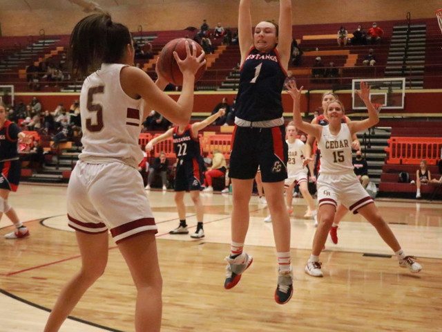 Region 9 girls basketball: Canyon View, Cedar, Desert Hills and Pine View win big at home
