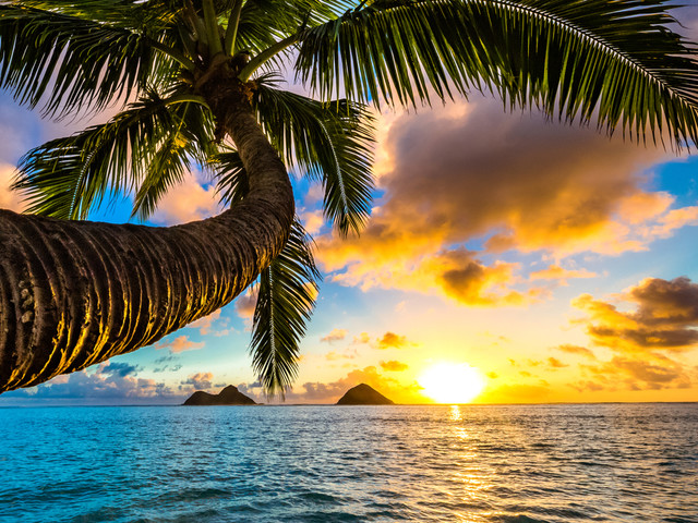 Is it possible to save on Hawaiian vacation packages?