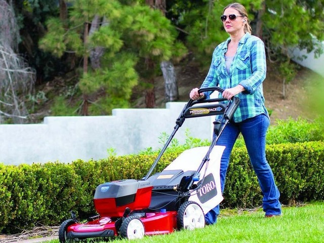 The best lawn mowers