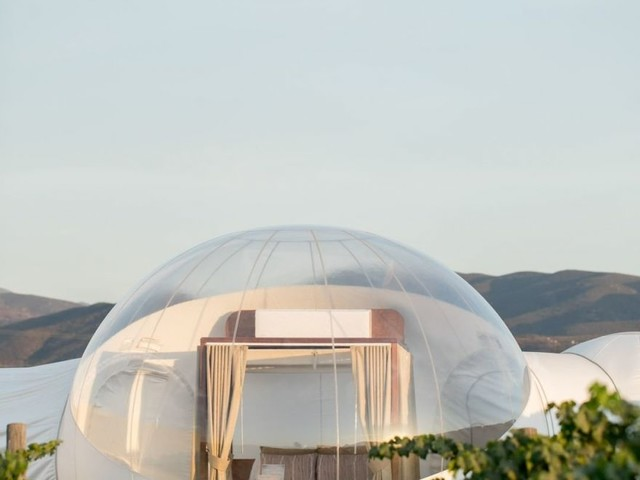 This Stunning Bubble-Shaped Hotel In Mexico Is Also Next To A Winery