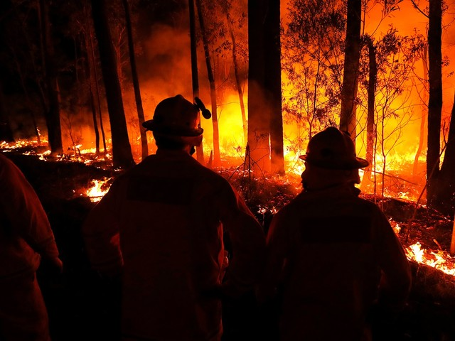 Australia Fires Continue To Devastate — Here's How You Can Help