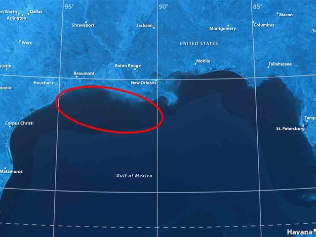 Gulf of Mexico Now Largest Dead Zone in the World, and Factory Farming Is to Blame