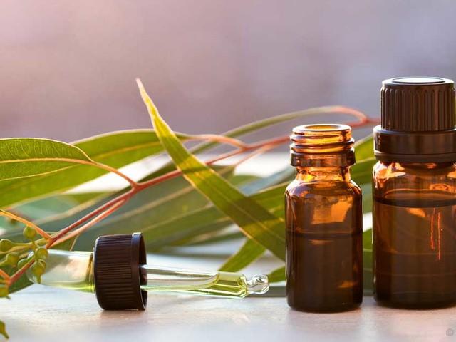 Jump-Start Your Health With Lemon Eucalyptus Oil