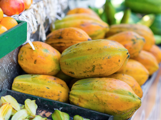 Outbreak of Salmonella Linked to Whole, Fresh Papayas Imported from Mexico