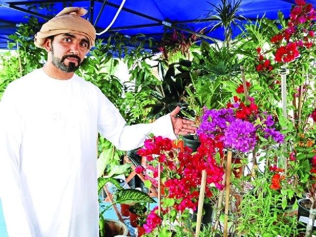 Emirati to give away 4,600 Ghaf seedlings, flowers for UAE National Day